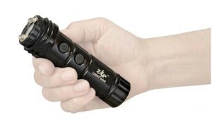 Ps Zap Stun Gun 800,000 Volts W/lght